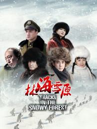 林海雪原2017