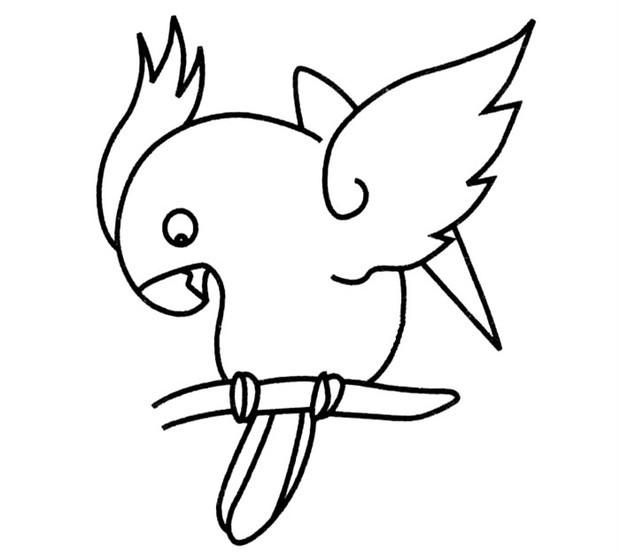 鹦鹉简笔画步骤_360问答