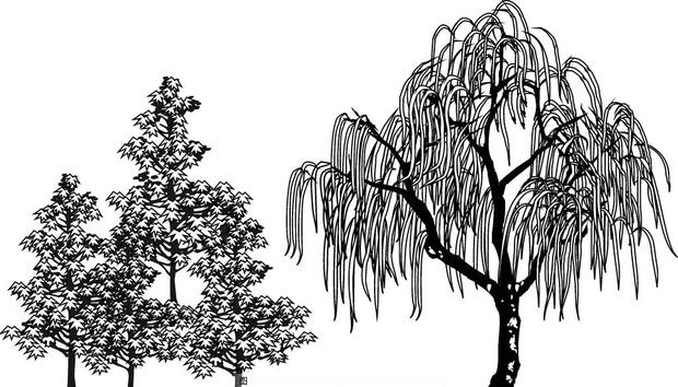 树木组合简笔画垂直式怎么花,求指点.