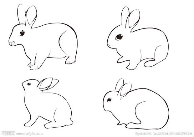 怎么画玉兔简单
