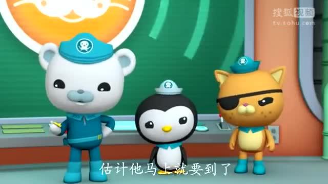 《海底小纵队第4季动画片》港海豹-学习颜色动画玩具-生活是条毛.