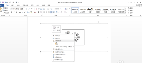 在word中插入CAD图两边空白太多,v空白?天正cad加粗字体怎么图片