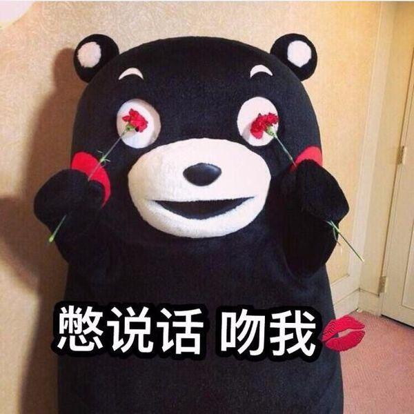 熊本熊,别说话1吻我的表情为什么图片痛苦大全的表情包图片