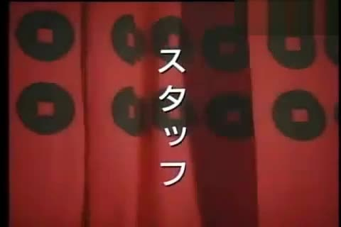 柳生真剑白刃取 (空手入白刃)图片