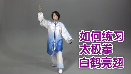 视频:如何练习太极拳白鹤亮翅?太极拳教学