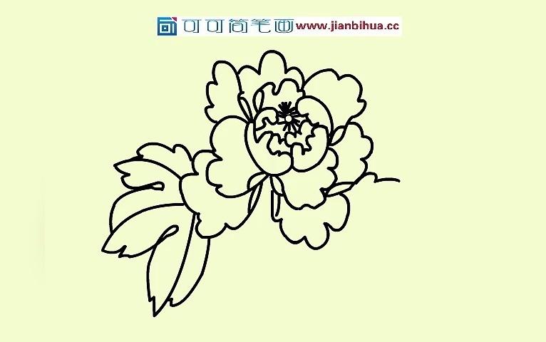 印度国花矢量图