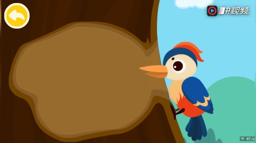 宝宝巴士 奇妙动物世界 森林动物 啄木鸟 孔雀 松鼠 老虎 变色龙