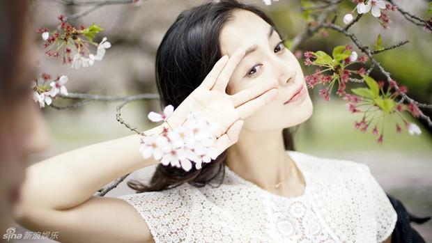 求杨颖樱花说高清大图,要两兆以上的,如能提供十分感谢