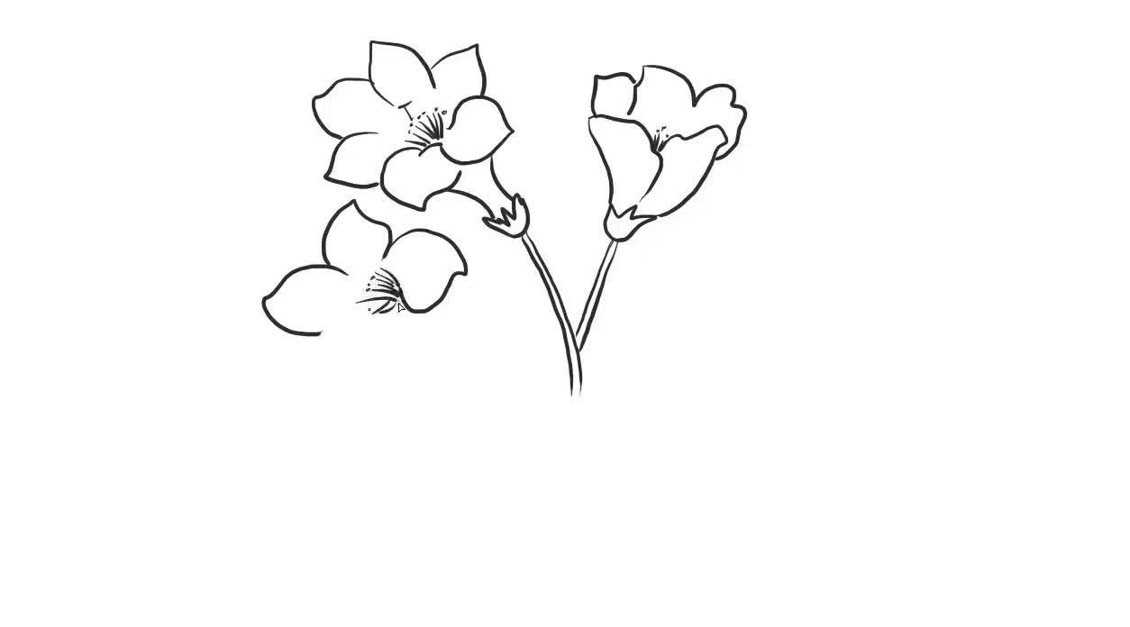 杜鹃花幼儿儿童亲子简笔画-绘心儿童绘画教程-绘心儿童