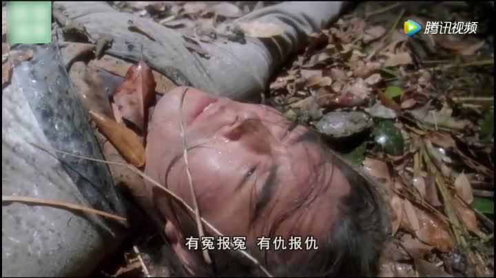 新仙鹤神针,皇阿玛本色出演,张铁林罕见出演狠角色