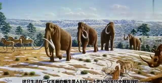 b>史前巨蟒 /b>能生吞霸王龙?人类历史上发现.
