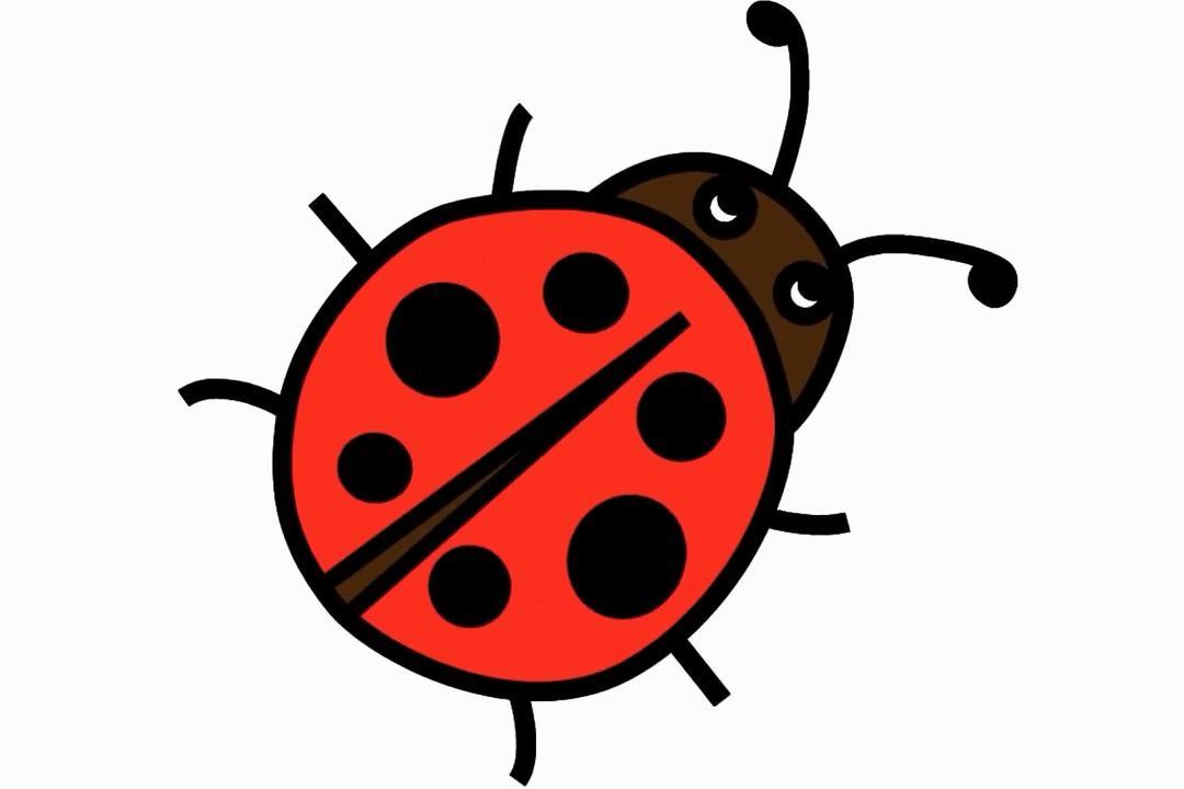 视频:幼儿简笔画画小动物,和宝贝一起学画一只简笔画瓢虫