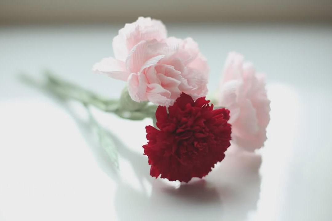 玫瑰花制作过程 皱纹纸花制作视频 百合花 皱纹纸花制作视频 花洋