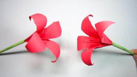 简单又好看的纸花折法,手工折纸百合花