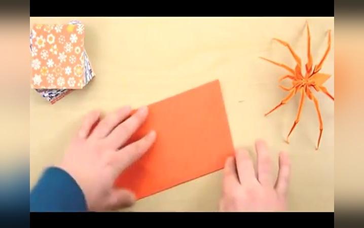 幼儿园手工制作大全 手工折纸蜘蛛