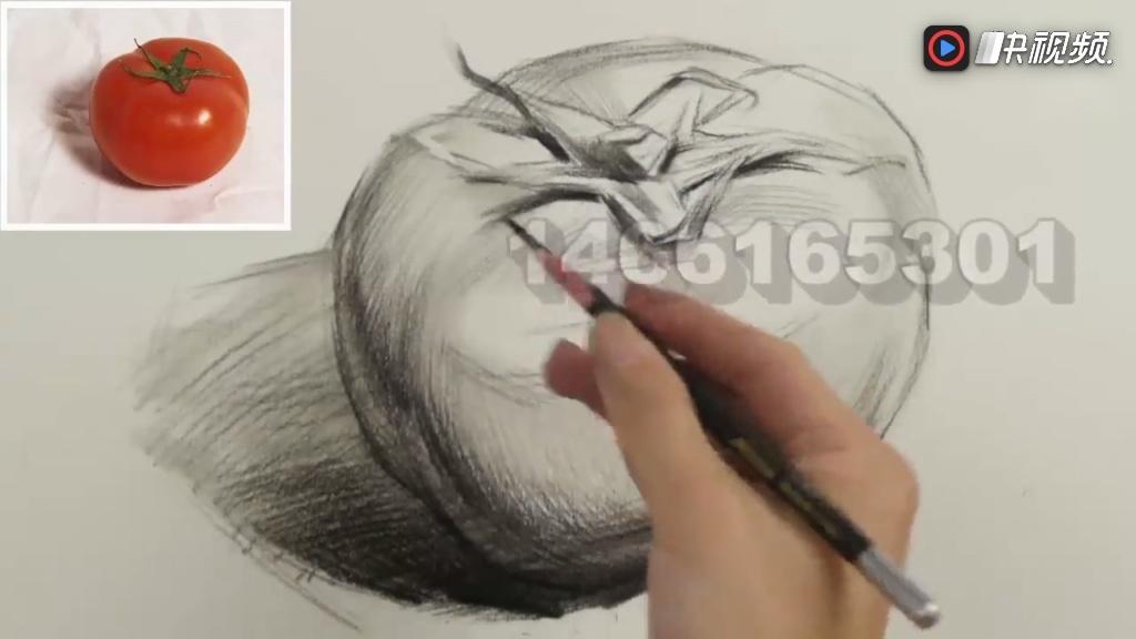 素描基础入门系列教学视频,素描单体西红柿的画法分析