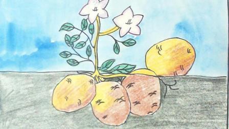 儿童简单可爱简笔画教程:轻松学会画卡通趣味土豆