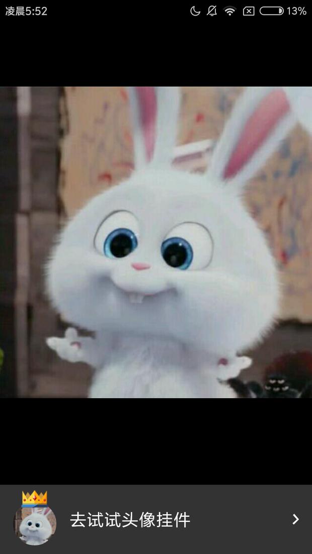 这个兔子出自什么动画片,叫什么名字