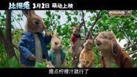 比得兔大电影国语版2018票房表现不俗