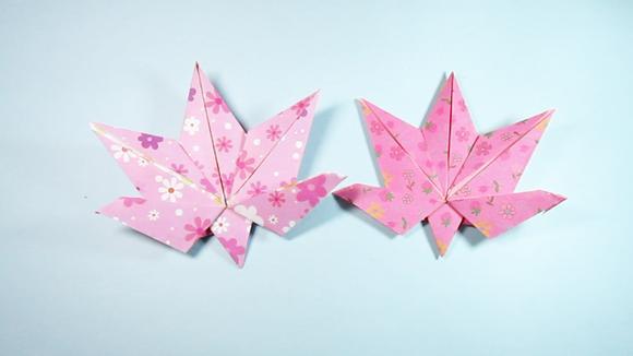 视频:折纸大全简单又漂亮枫叶,看一遍就能学会枫树叶子的折法