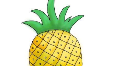 郭老师水果系列儿童简笔画教程-菠萝