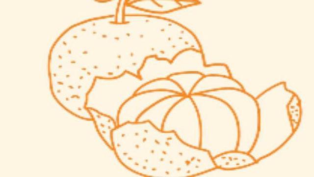 视频:橘子简笔画教程 如何画橘子简笔画