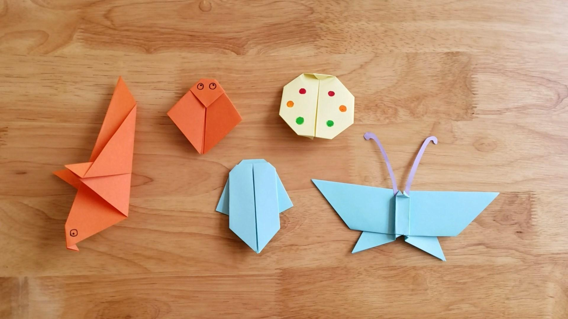 简单漂亮的折纸昆虫大全,最新最全的儿童手工-手工diy-巧手菌