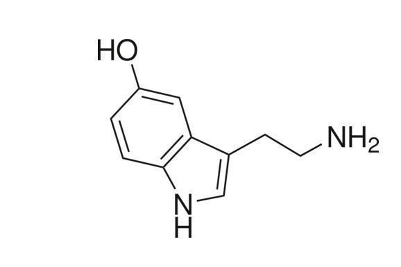 这是什么化学结构图?
