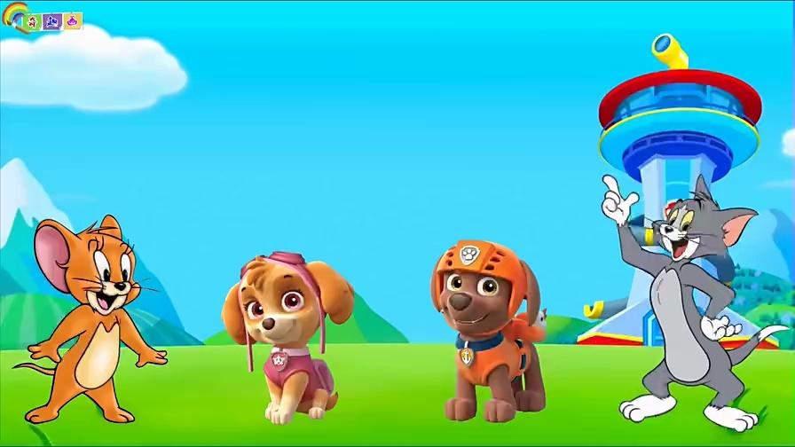 益智儿童动画-汪汪队天天猫和老鼠找身体图片