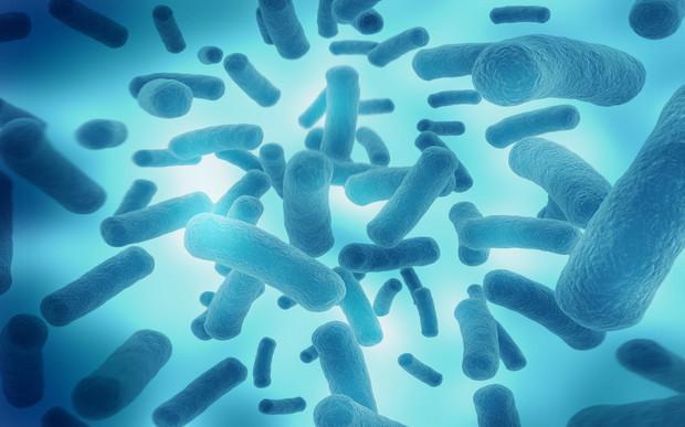 感染轮状病毒后有抗体做法蒸姜的红糖图片