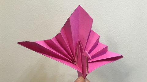 视频教程:创意手工折纸,孔雀开屏,大吉大利
