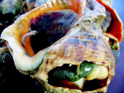 海螺怎么去脑子图片_吃大海螺怎么去脑子