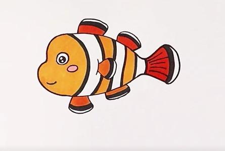 可爱的小丑鱼简笔画教程,画面简单温馨,孩子容易上手