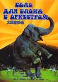 大象音乐会