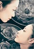 牡丹与蔷薇