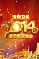 深圳卫视春节特别节目 2014