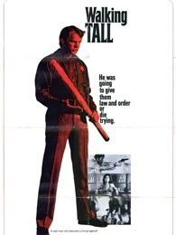势不两立(1973)
