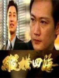 纵横四海-电视剧