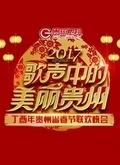 2017贵州卫视鸡年春晚