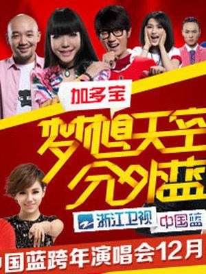 浙江卫视2013跨年晚会
