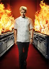 地狱厨房 第14季