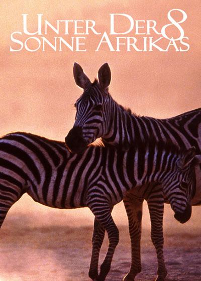 走进非洲8蓬勃的生命