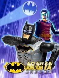 蝙蝠侠 披风战士传奇