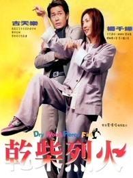 干柴烈火(2002)