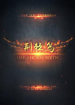 荆棘鸟乐乐影院