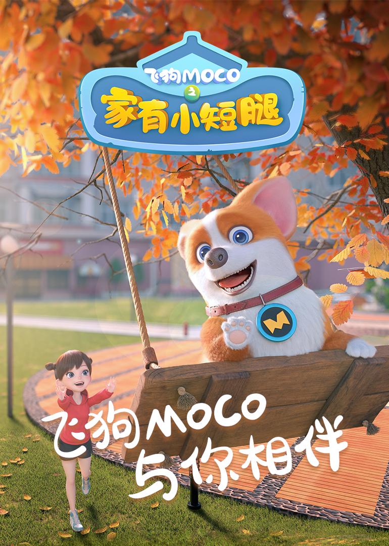 飞狗MOCO之家有小短腿