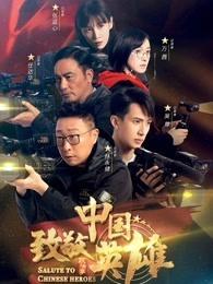 致敬中国英雄网络版