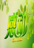 感動黑龍江衛視 2013