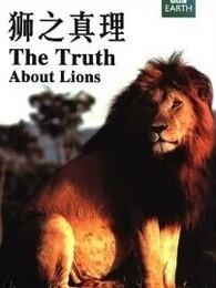 BBC:狮子的真相