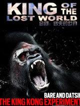 失落世界的统治者电影海报